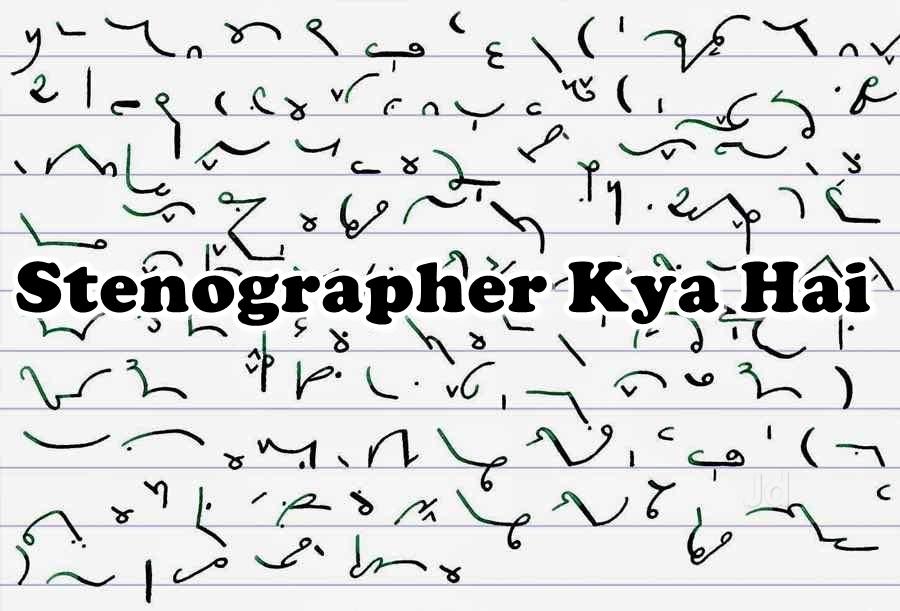 stenographer kya hai